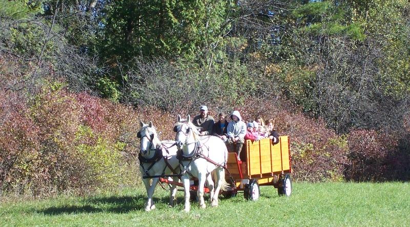 Painted Woods Farm wagon, Brandon VT