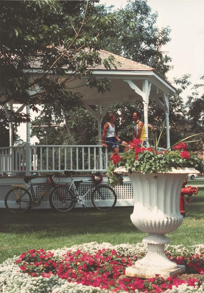 Brandon's Central Park